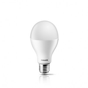 bóng led philips