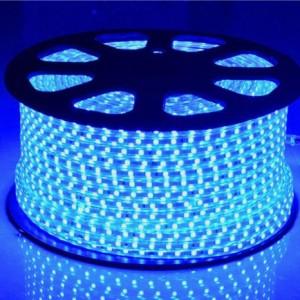 LED Dây 5050 xanh dương