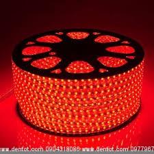 led dây 220v cuộn 100m 5050- ánh sáng đỏ